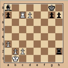 chess-puzzle 17 beginner p. 13 #1 mate in 1