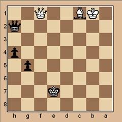 chess-endgame-puzzle #55 p.173
