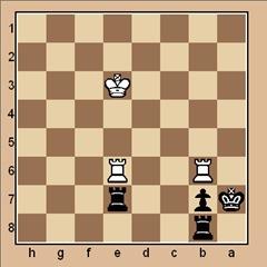 chess-endgame-puzzle #58 p. 187